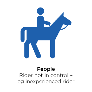 People not in control of the horse.