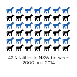 28 percent of fatalities occurred in NSS.