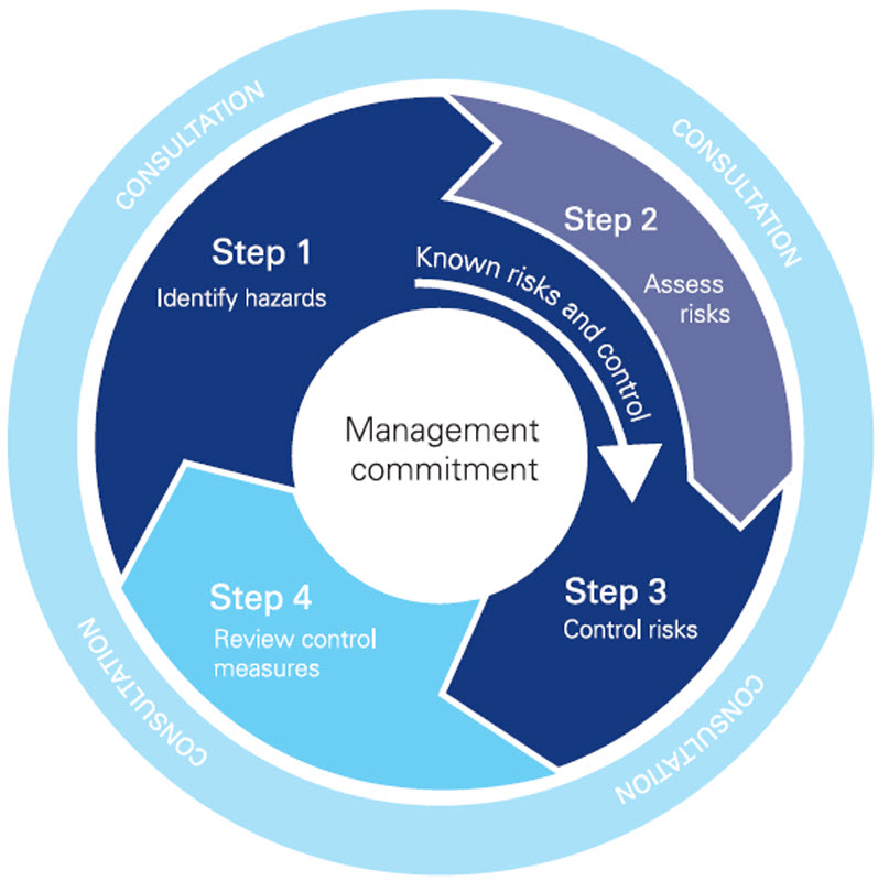 Figure 1: The four-step risk management process