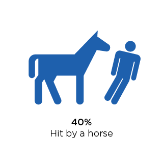 42 percent hit by a horse.